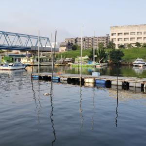 8月の江戸川放水路ハゼ釣り!高橋遊船を利用する際の注意点を紹介!