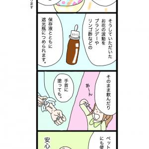 フラワーエッセンス 4コマ漫画♪ 第2弾