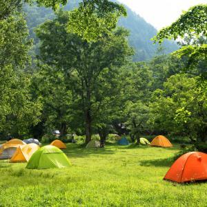 キャンプ場に関する情報収集およびデータ入力およびライティングなど