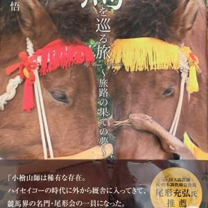 馬を巡る旅〜旅路の果ての夢