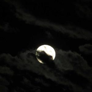 台風一過の月夜!