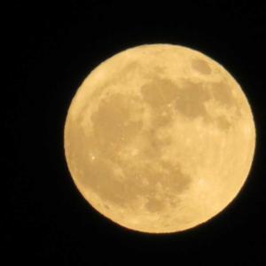 まん丸な月!