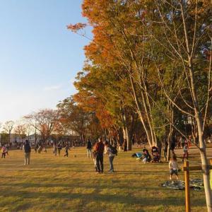 鶴舞公園!