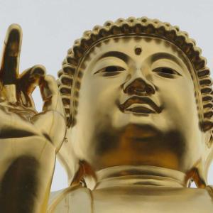 黄金の仏像に願う!