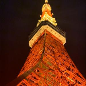 中国人妻、東京タワーに立つ