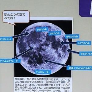 月齢6.7 (半月、上弦)