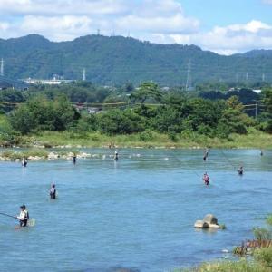 相模川・上大島 鮎釣りの釣り人たち
