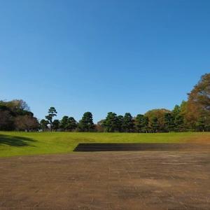 錦秋の相模原公園の風景(もうすぐ立冬) 1