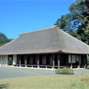 緑区大島 相模川自然の村公園をぶらり散策