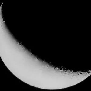月齢24.9 綺麗な三日月
