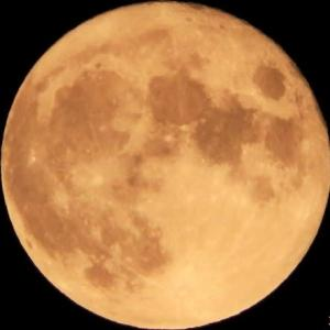 月齢14.1 今日は満月、