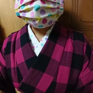 ある日の普段着物 半衿と布マスクコーデ