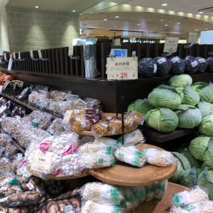 お弁当記録 15 野菜が安い