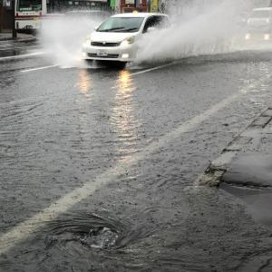 【ゲリラ雷雨】冠水道路を走行してナンバープレートが曲がった時の対処法(直す方法)