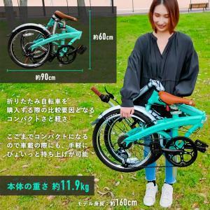 【20インチ 折り畳み自転車】EIZER Lefure3が大人気の理由!