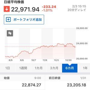 本日の東京株式市場(2020年2月3日)&冬に咲く薔薇