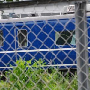 南栗橋車両管理区本区観察(2020.7.11)