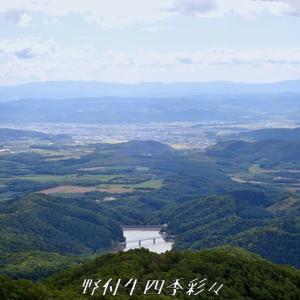 9月の野山