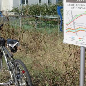 新方川緑道と元荒川緑道とがつながっていました(2)
