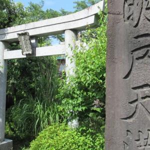 岩槻久伊豆神社の茅の輪/休館中の岩槻人形博物館