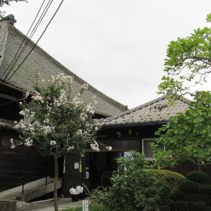 本堂改修工事中の野島地蔵尊(浄山寺)