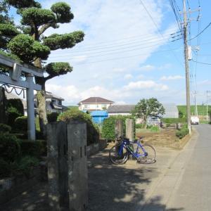 吉川市内の2神社を巡って江戸川サイクリングロードへ