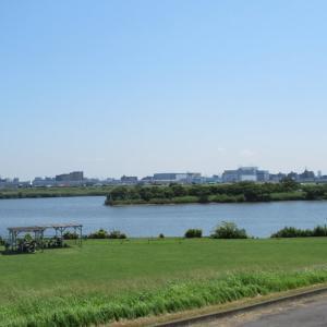 市川市の行徳地区と江戸川沿いを自転車散歩