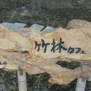 猛暑の江戸川左岸を走行して竹林カフェさんで一息