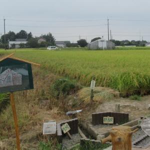 三県境を訪問後、埼玉-栃木-群馬-茨城-千葉の5県を走破