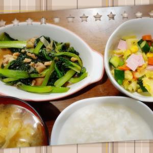 2月14日夕食おうちご飯~初めてのターツァイ~