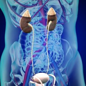 健康の為毎日水2リットルを目標に数年間飲み続けたのが間違い?!~腎盂拡張~
