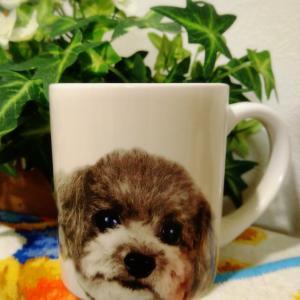 100円ショップのマグカップ♡