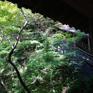 2019年初秋 残暑京都de親子旅【オフシーズンの永観堂は最高でした】