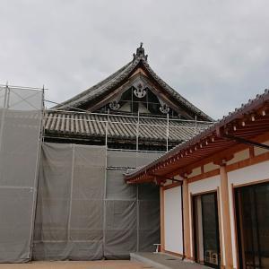2019年初秋 残暑京都de親子旅【私四度目、母は初の三十三間堂へ】