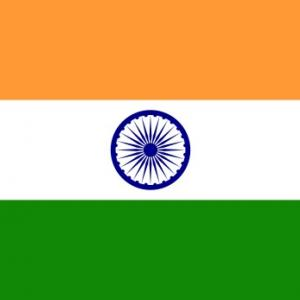 インドへ〜荷物と牛丼と真っ赤なバーガー〜