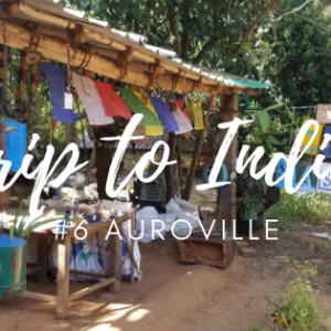 Auroville滞在記・後編 Sadhana Forest