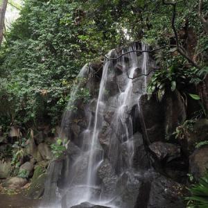 名主の滝公園 ☆緑と水辺に囲まれた滝まである都会の公園