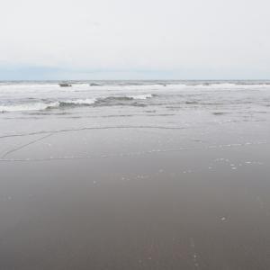 感動が無いと写真もダメになるね ・九十九里白里海岸(千葉県九十九里浜車中泊Ⅵ その3)