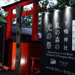 下鴨神社 チームラボインスタレーション