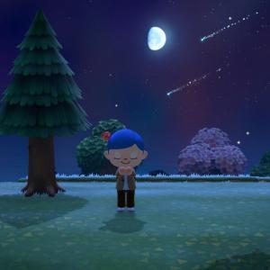 【あつまれどうぶつの森】流星群の時って何か告知ある?