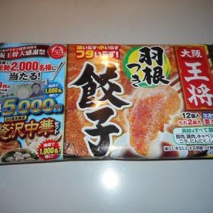 冷凍食品 大阪王将の羽根つき餃子