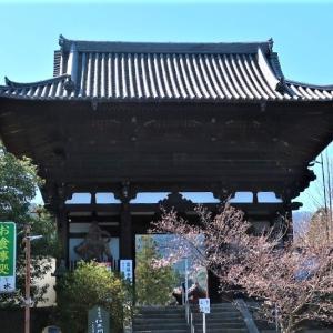 當麻寺(奈良)へ行ってきました~その2~本堂おまいりと奥之院宝物館~