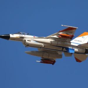 今日の岐阜基地 F-2 with にんじん✖4