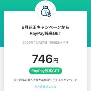 PayPay花王キャンペーンのポイントもらえた!
