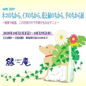 【ネコちか】今日が最終日!