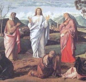 言の葉(アタナシオ信条):福音書を読もう。主イエス・キリストの御名によって。アーメン。