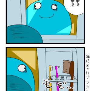 歯を磨く前に海坊主