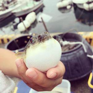 4連休初日 朝4時起きで釣りに行ってきました。