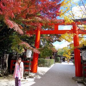 Beautiful country Japan