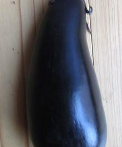 茄子を1本収穫した。